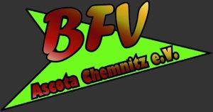 BFV Logo 300x160 grau