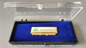 Ehrennadel in Gold des SBV